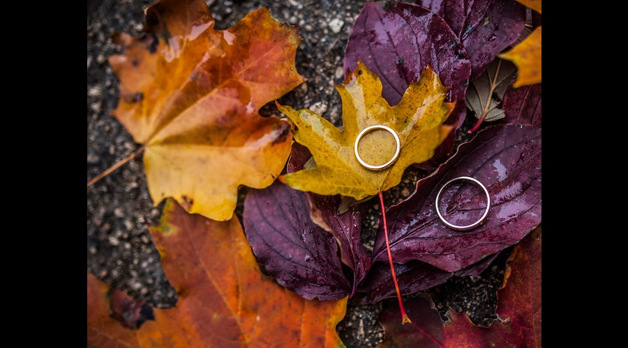 Our Wedding Jewellery Guide this Autumn