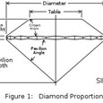A Diamond's Anatomy